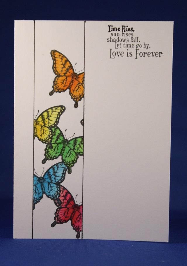 vlinders 1 laag